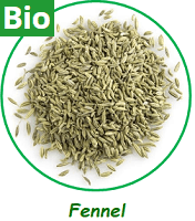 Fennel Seeds Whole (Bio)