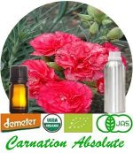 Organic Carnation Absolute