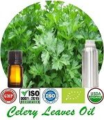 Organic Celery Leaves Oil (p) 150x173