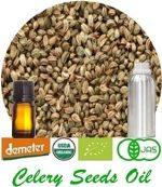Organic Celery Seeds Oil