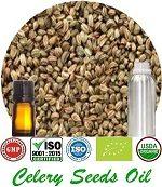 Organic Celery Seeds Oil (p) 150x173