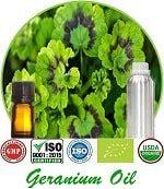 Organic Geranium Oil (p) 150x173