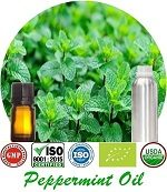 Organic Peppermint Oil (p) 150x173