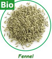 Fennel Seeds Whole (Bio)