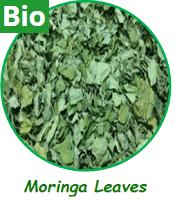 Moringa Leaves (Bio)